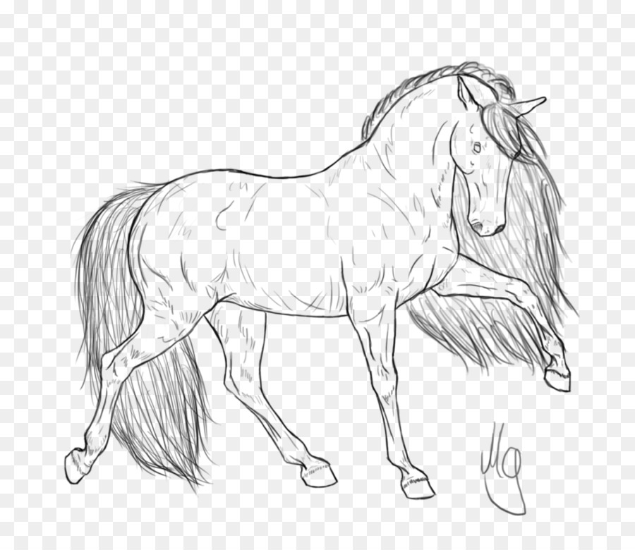 Friesian horse Coloring book Foal Standardbred Horse head mask ...