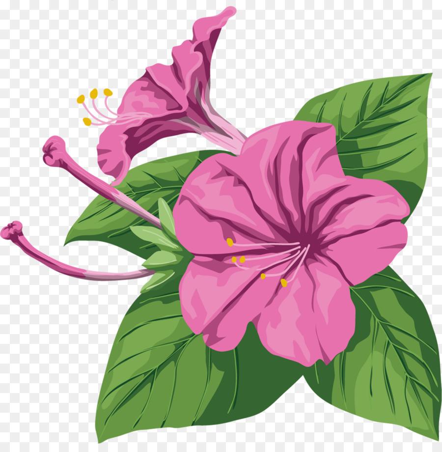 Ipomoea nil purple violet flower tropical flowers png download ipomoea nil purple violet flower tropical flowers mightylinksfo