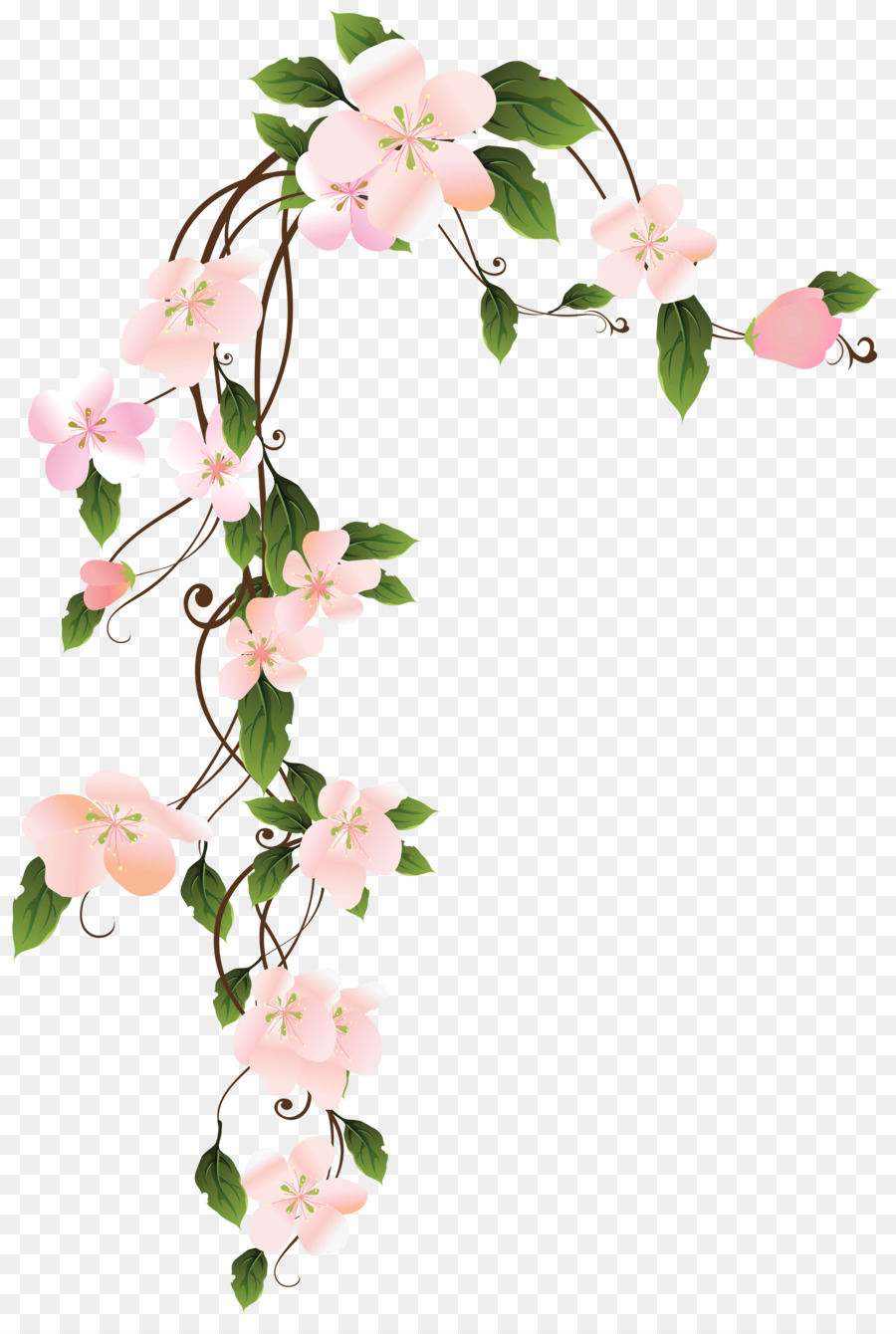 Flower Borders And Frames Clip Art Painting Png Download 4742