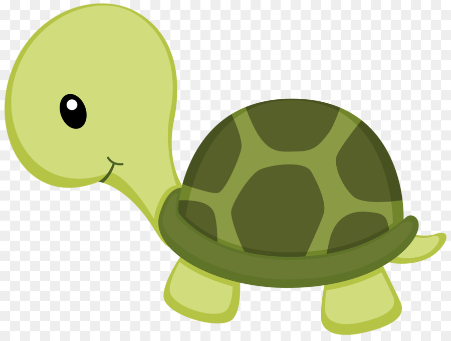 turtle drawing clip art under sea png download 900 675 free rh kisspng com turtle pic clipart cartoon turtle images clip art