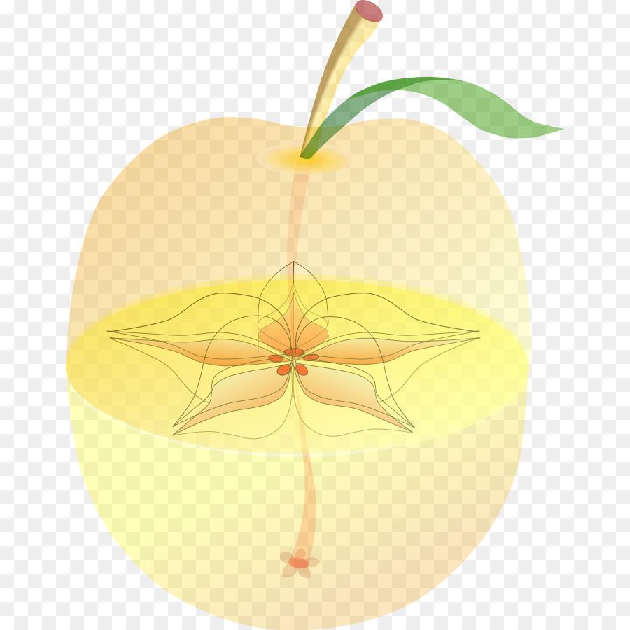 Manzana Comida De La Fruta De Melocotón - anatomía Formatos De ...