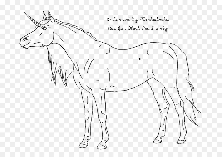 caballo de l u00ednea de dibujo en el arte diagrama de cableado - unicornio png dibujo
