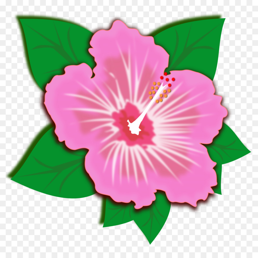 Hibiscus clip art sprin png download 24002400 free hibiscus clip art sprin izmirmasajfo