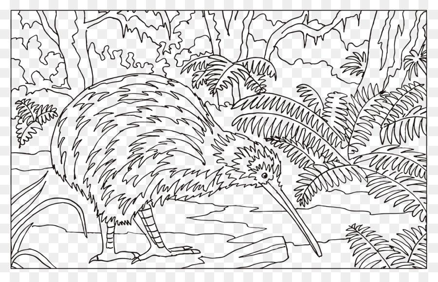 Burung Terbang Gambar Mewarnai Buku Burung Kiwi