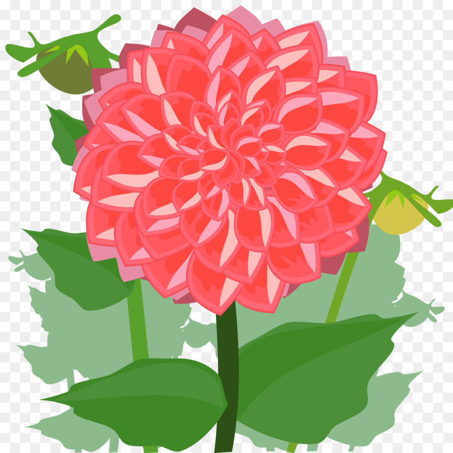 Dahlia Flower Drawing Clip Art Dahlia Png Download 24002400