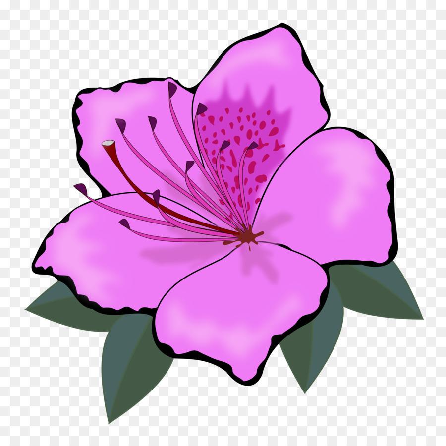 Flower orange clip art hawaii flower png download 24002400 flower orange clip art hawaii flower izmirmasajfo