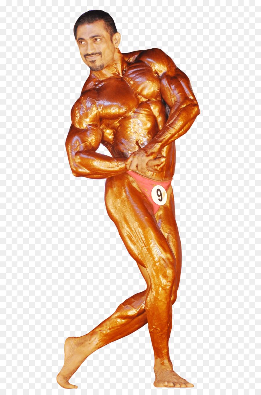 Culturismo femenino de aptitud Física del cuerpo Humano Muscular ...