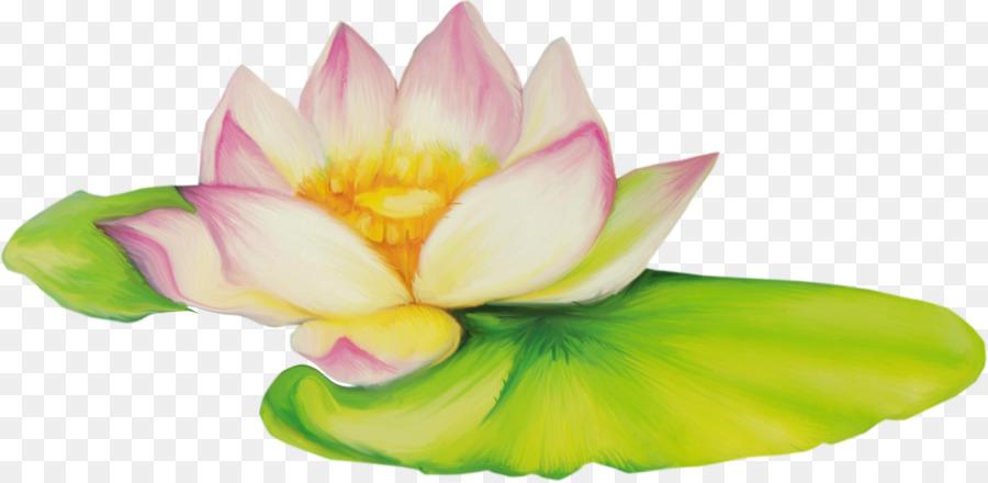 Nelumbo nucifera flower drawing clip art lotus flower png download nelumbo nucifera flower drawing clip art lotus flower mightylinksfo