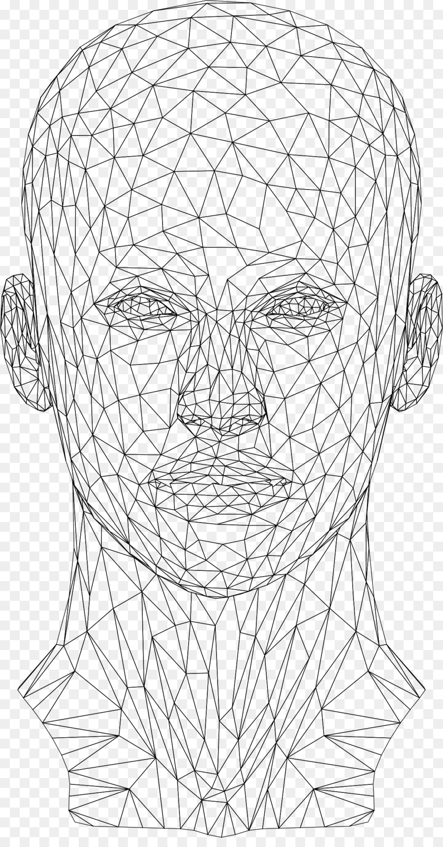 Website wireframe Wire-frame model Human head - wires png download ...