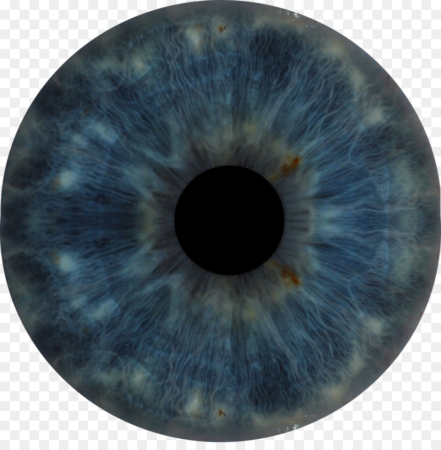 Ojo humano Iris - anatomía Formatos De Archivo De Imagen - 900*904 ...
