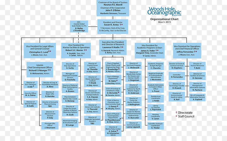 Organizational Chart Non Profit Organisation Structure Business Organization Png 738 542 Free Transpa