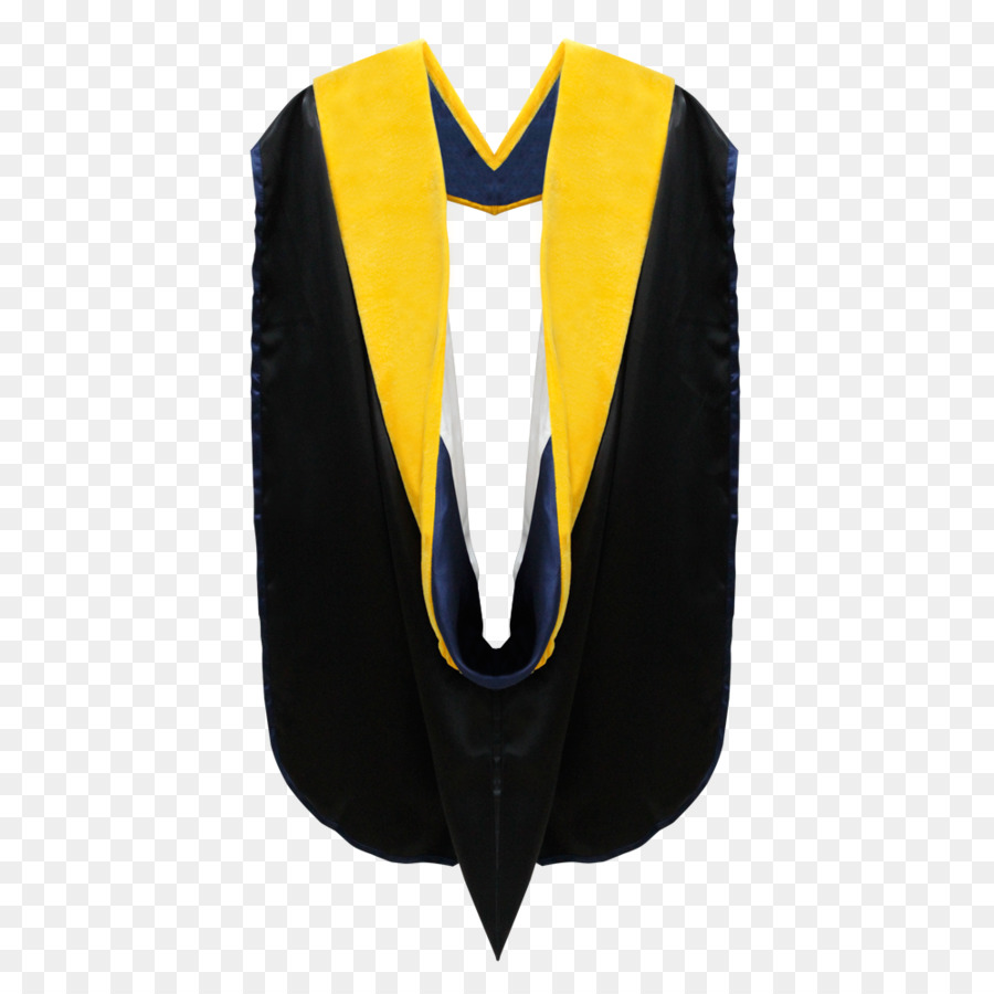 Academic dress Graduation ceremony Doctorate Academic degree Robe ...