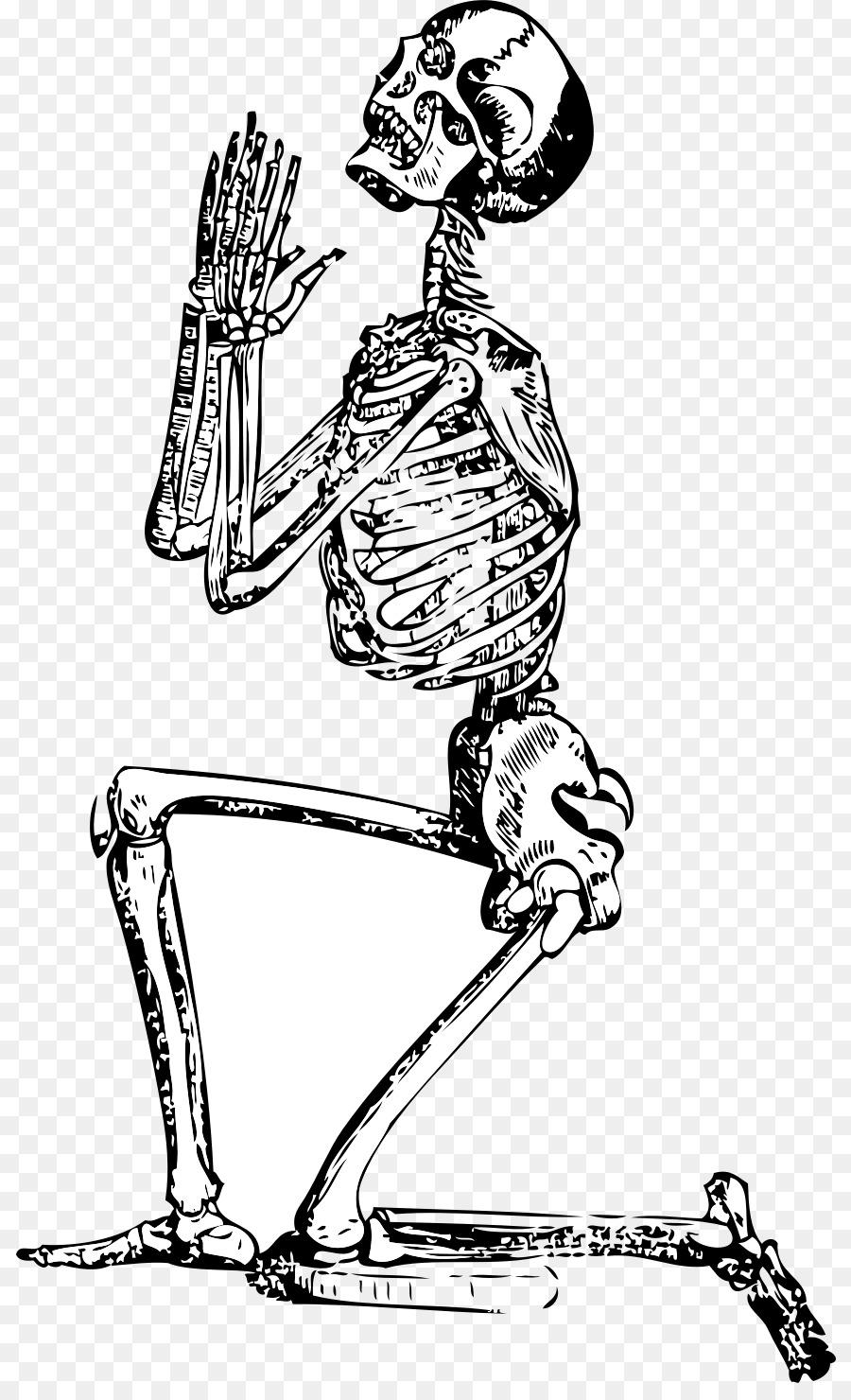a4ca184bf Skeleton Prayer Drawing Clip art - bones png download - 868*1462 ...