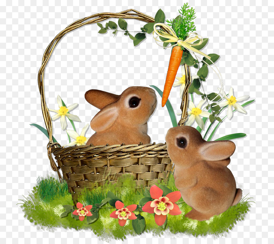 Easter bunny hare domestic rabbit blog png download 800800 easter bunny hare domestic rabbit blog negle Choice Image