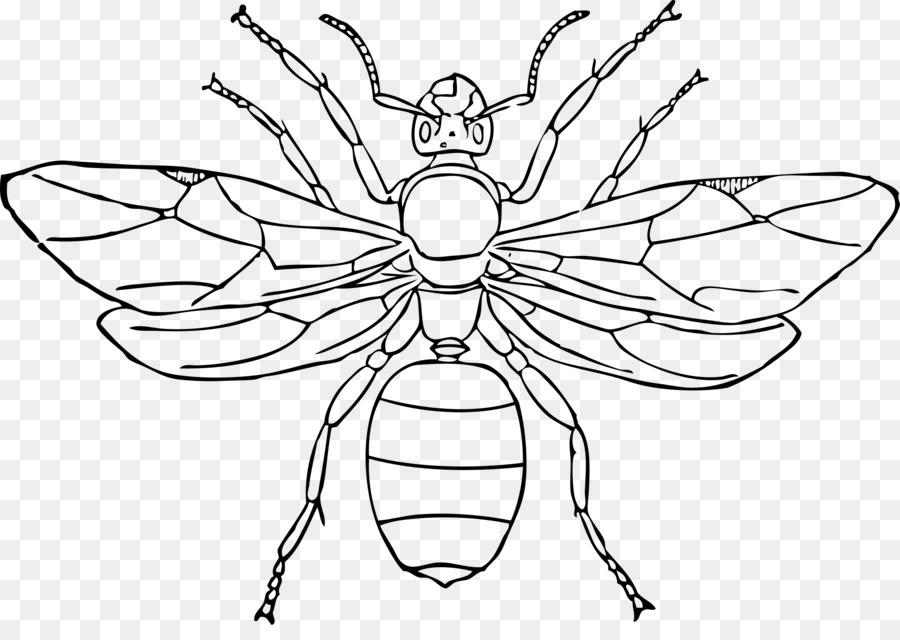 Hormiga reina de los Insectos Dibujo Clip art - las hormigas ...