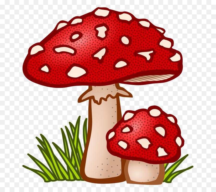 mushroom fungus amanita muscaria clip art fungi png download 775 rh kisspng com Rabbit Clip Art fudge clipart