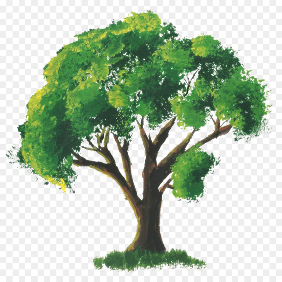 Watercolor painting Tree Drawing Art - leaves watercolor png ...