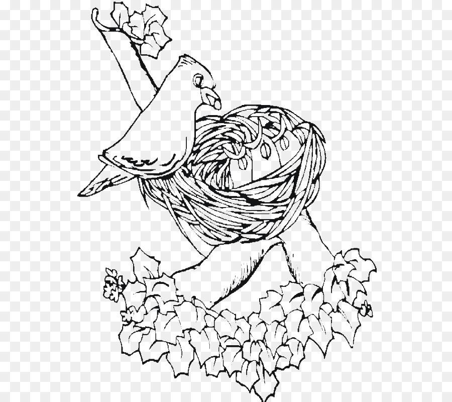Pájaro nido de Gorrión Búho libro para Colorear - Nido png dibujo ...