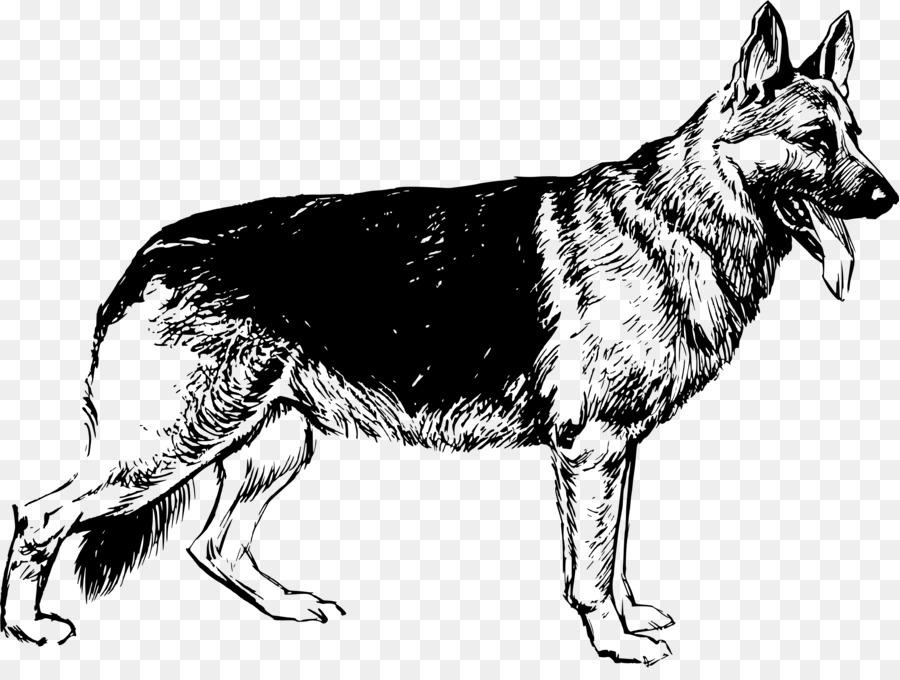 German Shepherd Puppy Drawing Clip Art Shepherd Png Download - German-shepherd-drawings