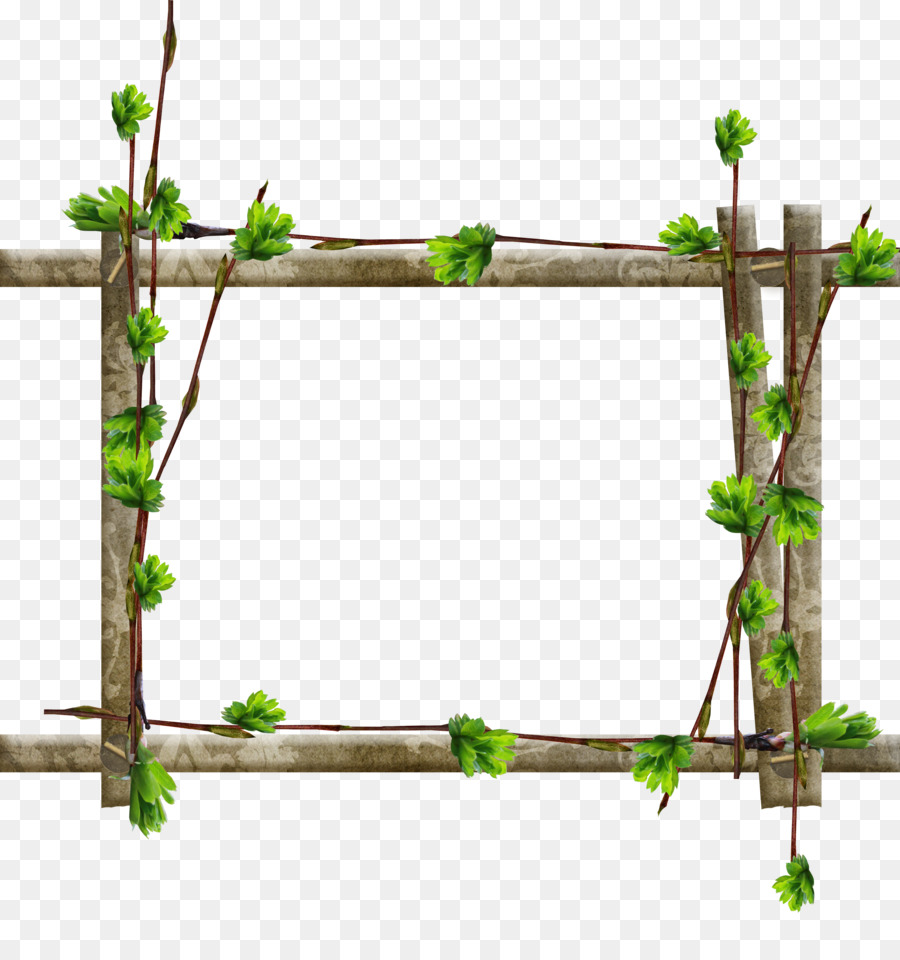 Picture Frames Tree Window Wood Branch - cute frame png download ...