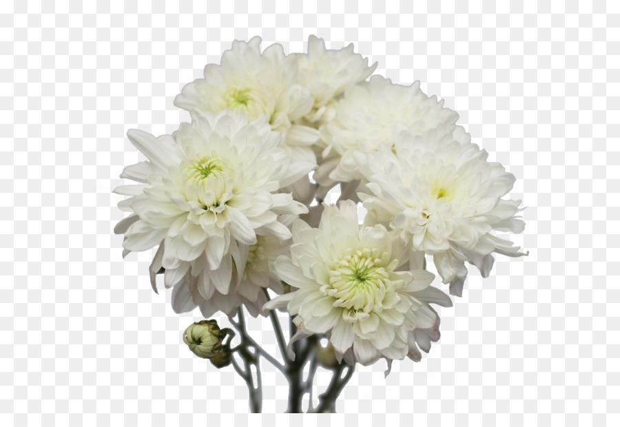 Chrysanthemum Cut flowers Flower bouquet Dahlia - lilac flower png ...
