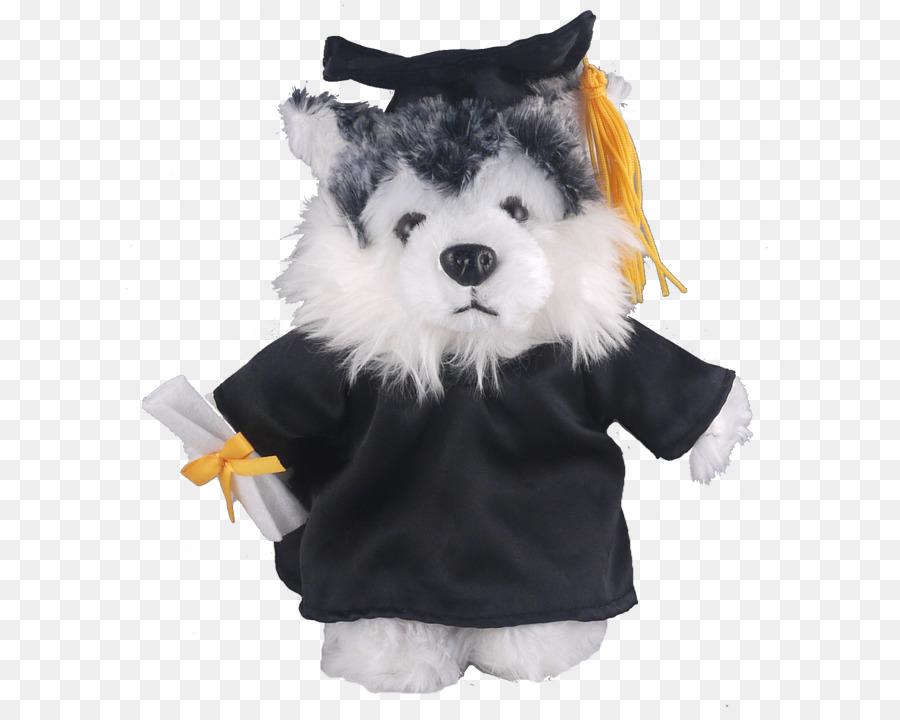 Stuffed Animals & Cuddly Toys Dog Graduation ceremony Academic dress ...