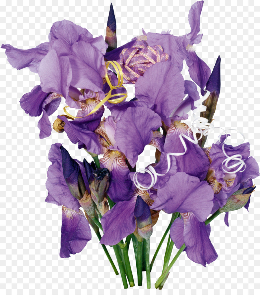 Cut Flowers Irises Wall Iris Flower Bouquet Iris Png Download