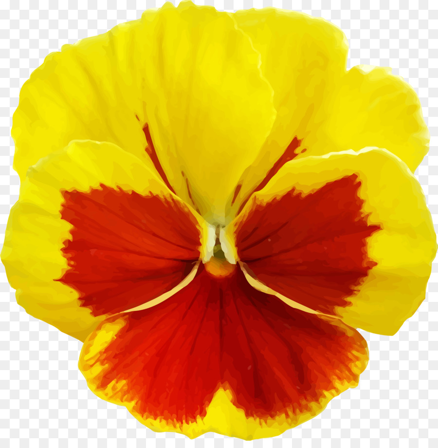 Pansy Violet Clip Art Pansy Png Download 23882400 Free