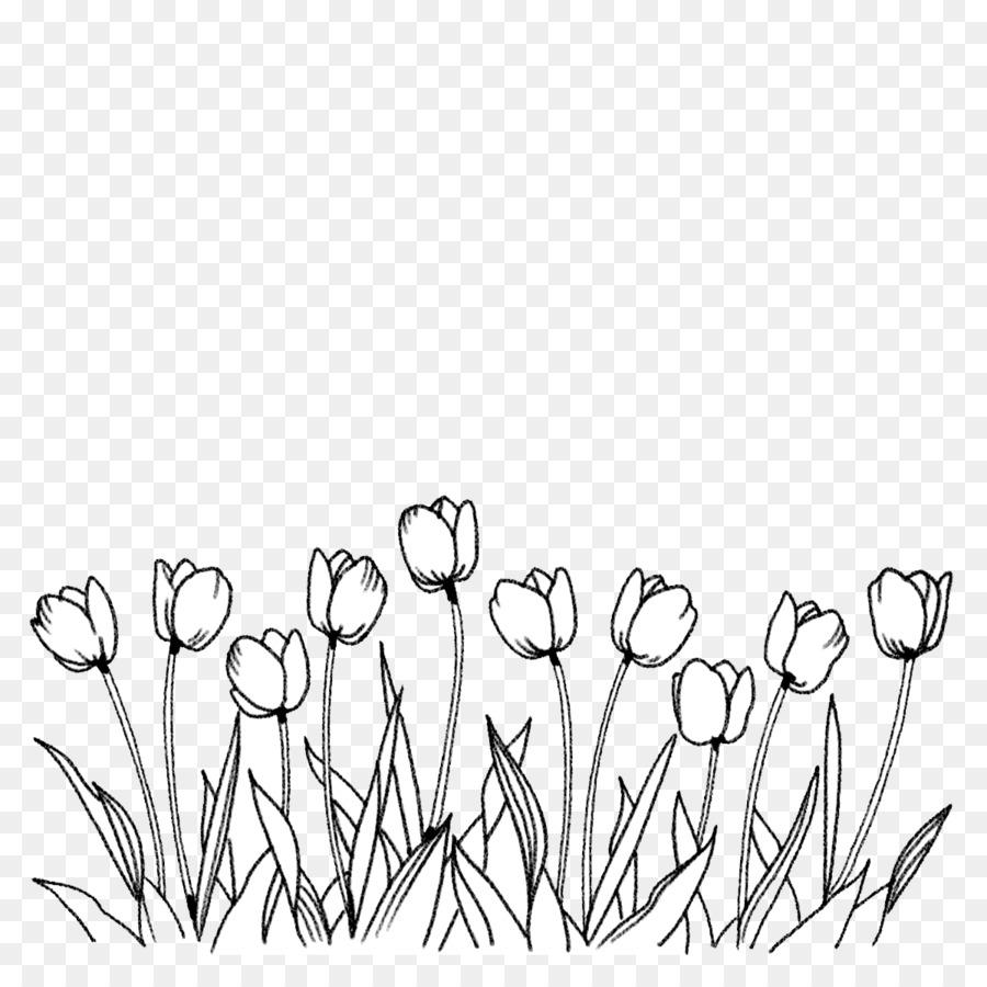 Flower Tulip Coloring Book Line Art Drawing