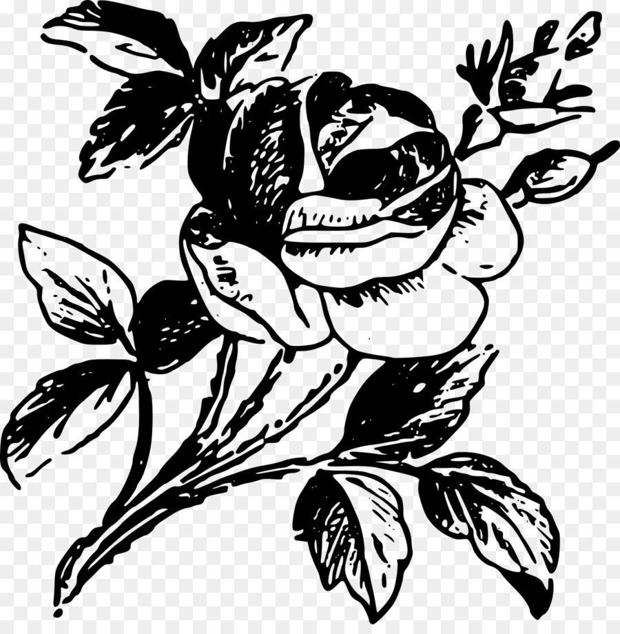 Rose Dibujo Clip Art Rose Tattoo Png Dibujo Transparente Png