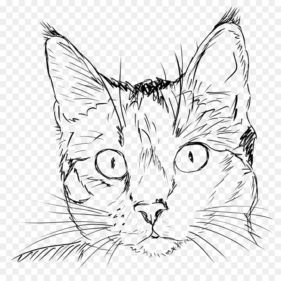 Line Drawing Cat Face : Cat drawing kitten line art face png download