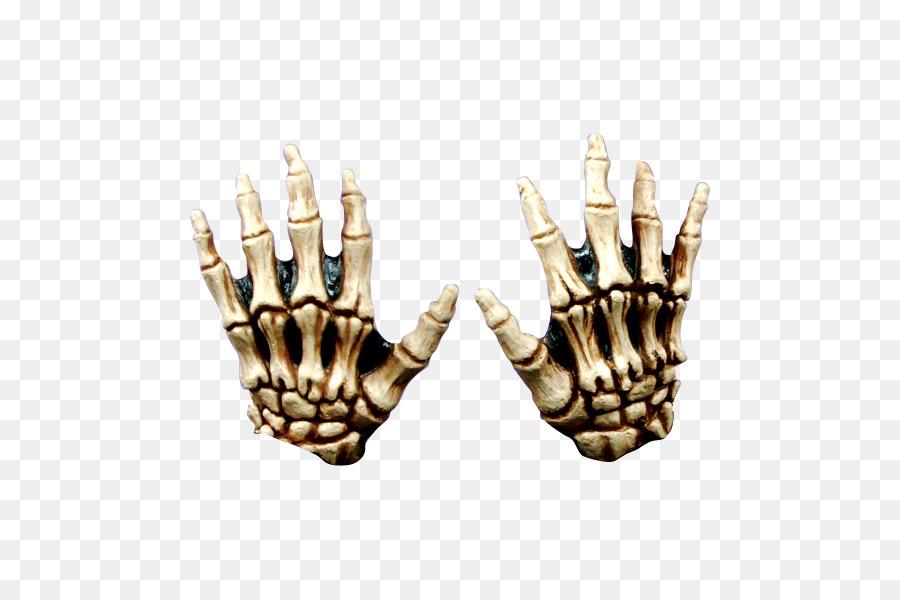Human Skeleton Hand Bone Skull Skeleton Png Download 600600