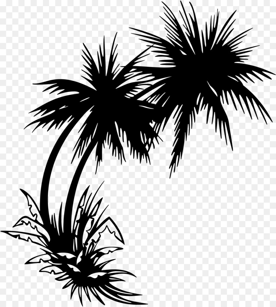 Arecaceae Tree Clip Art Coconut Tree Png Download 1153 1280