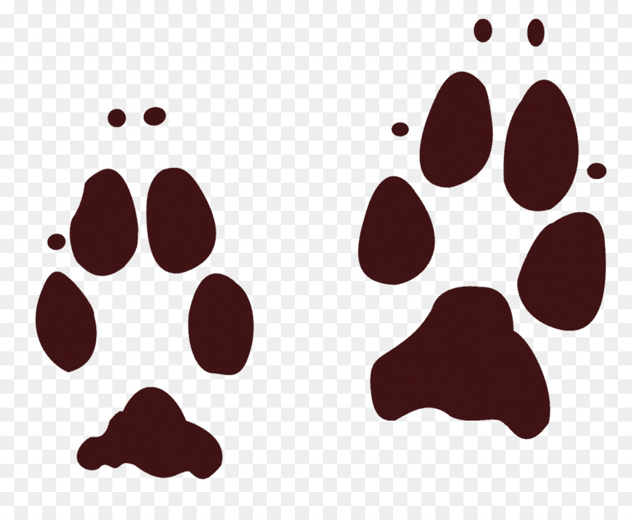Coyote Dog Animal Track Footprint Paw