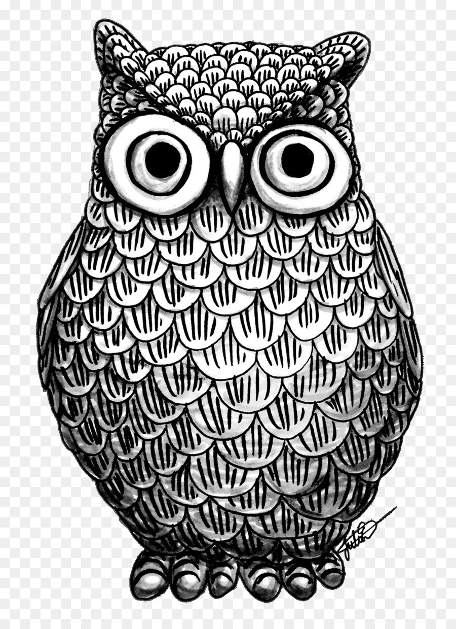Owl Drawing Art Coloring book - owl png download - 1000*1370 - Free ...