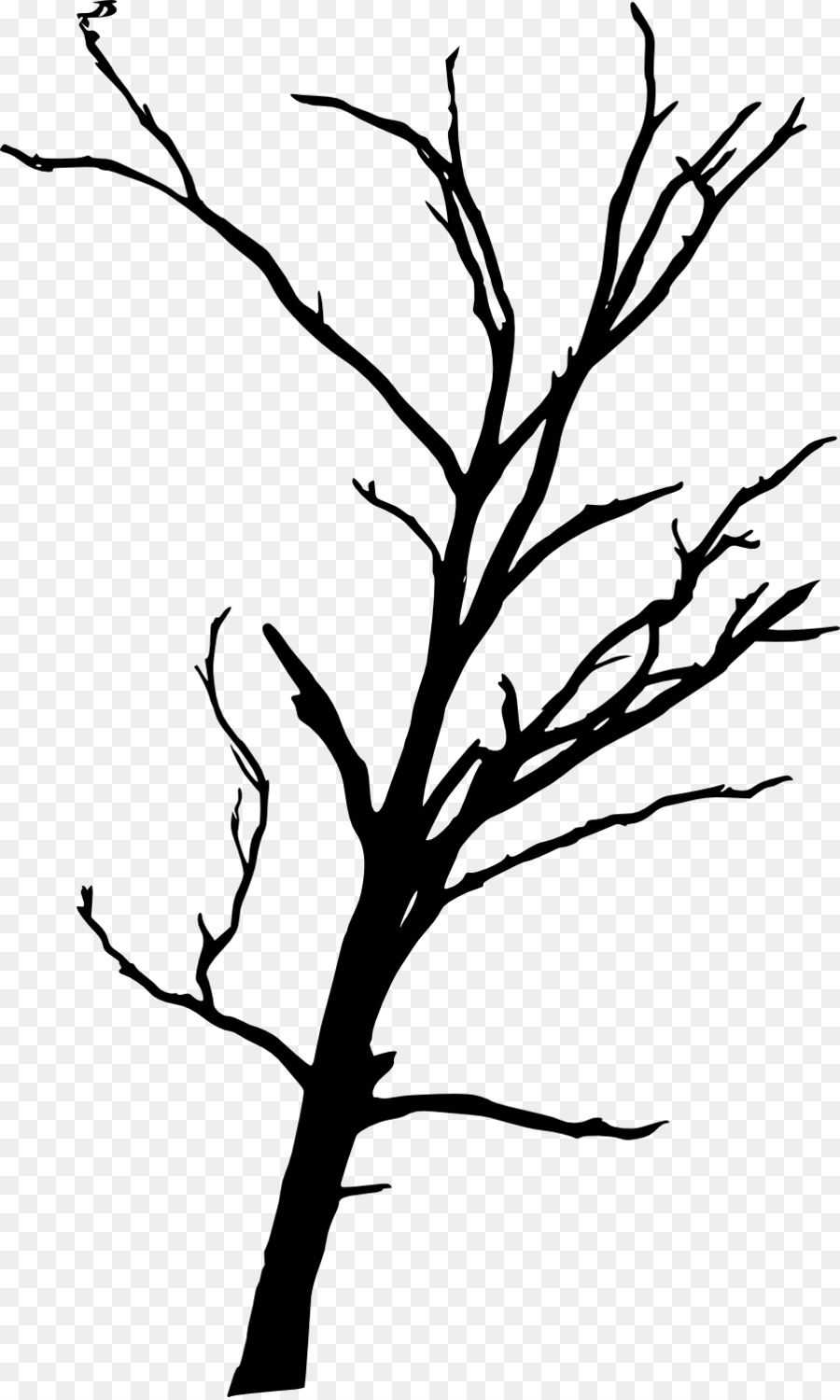 tree branch woody plant clip art dead tree png download 902 1500 rh kisspng com