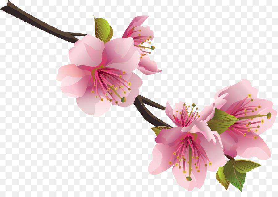 Flower bouquet Clip art - crocus png download - 2638*1833 - Free ...