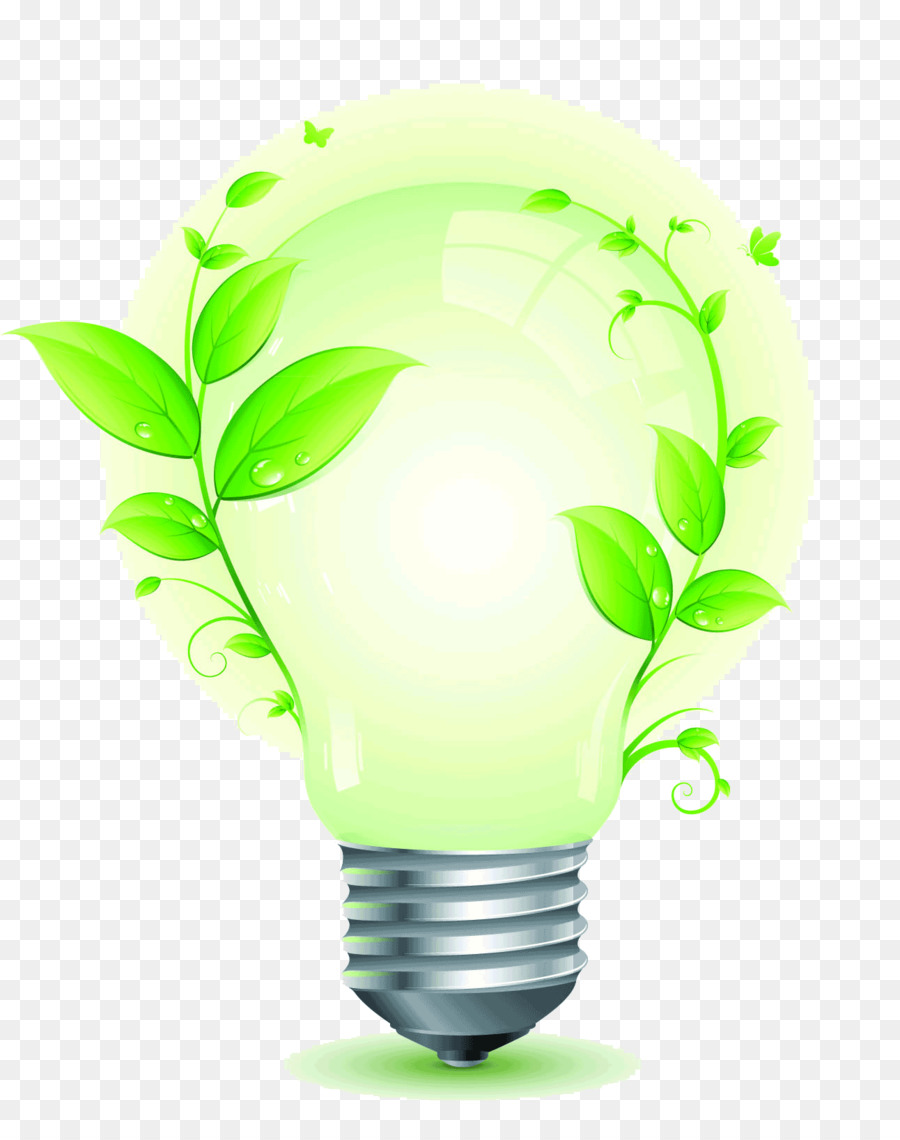Light Bulb Cartoon Png Download 1292 1627 Free