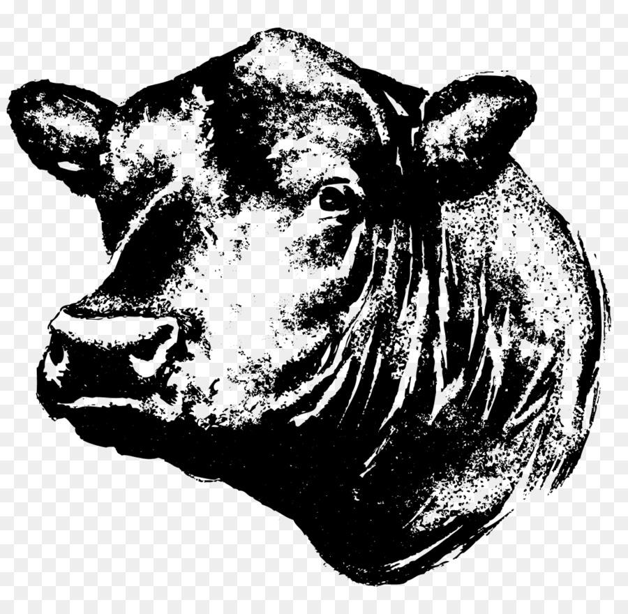 angus cattle kereman cattle beef cattle calf steak