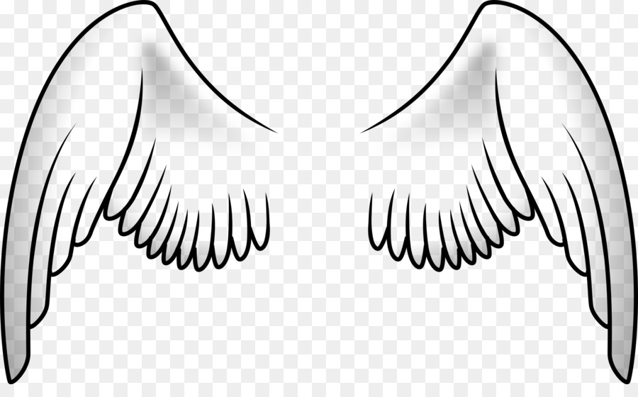 bird wing parrot clip art wings png download 2400 1444 free rh kisspng com clip art wings free angel wings clipart