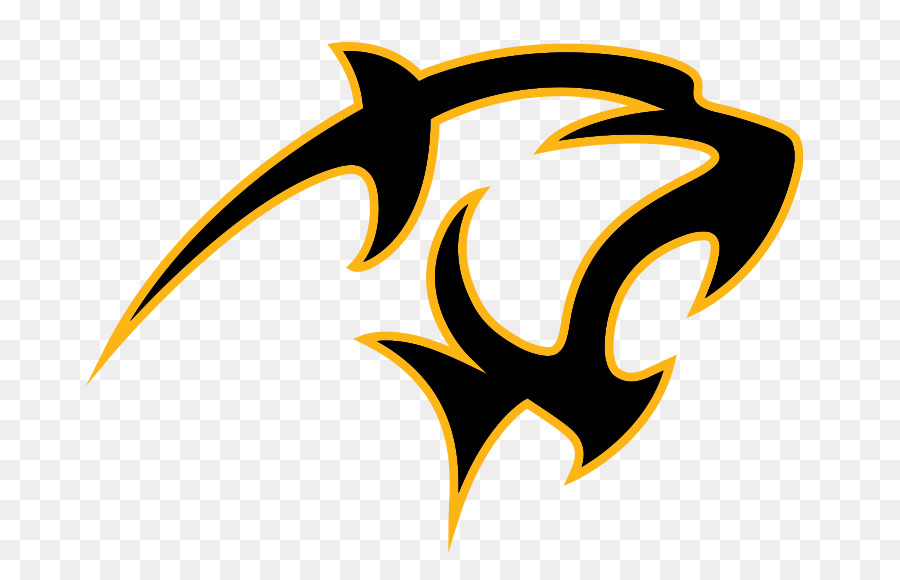 Adelphi University Panthers Mens Basketball Florida Institute Of