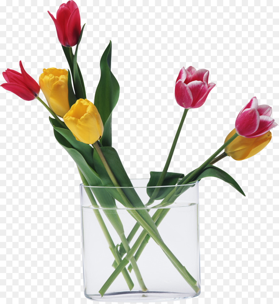 Cut Flowers Tulip Love Floristry Water Lilies Png Download 2334