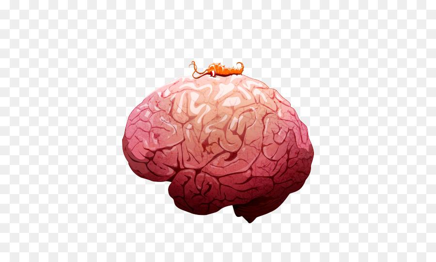 Plague Inc. Worm Plague Inc: Evolved Infection Pandemic - Brain png ...