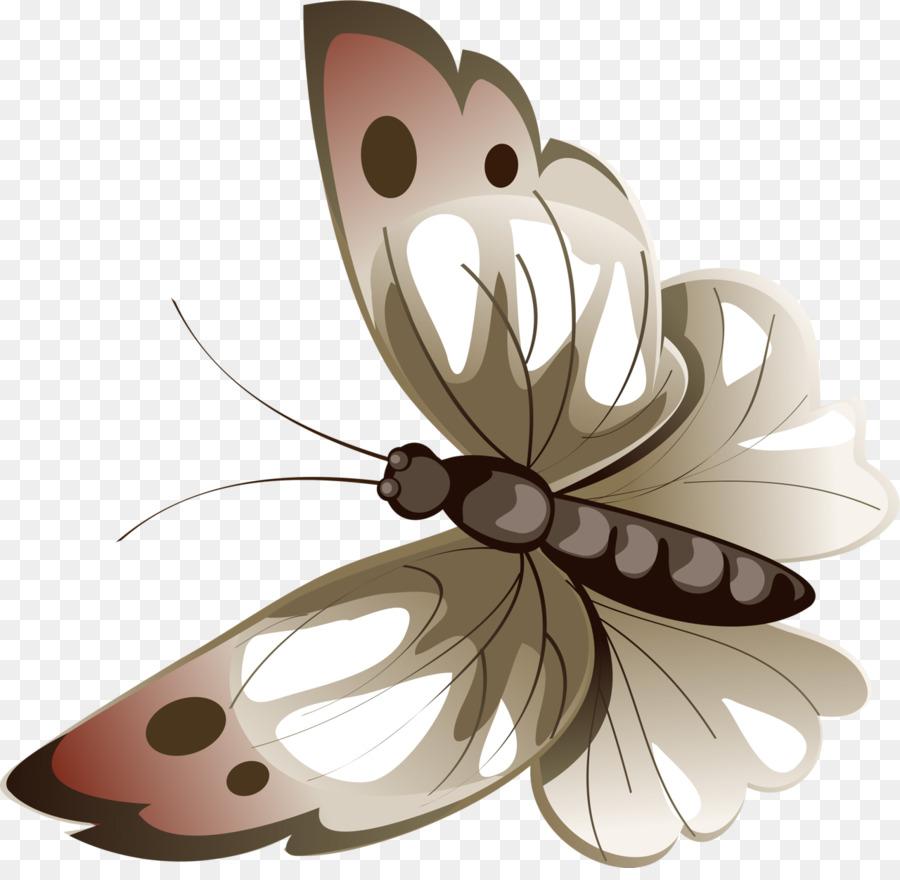 Голубая бабочка луны, hypolimnas bolina. Фото | премиум скачать.