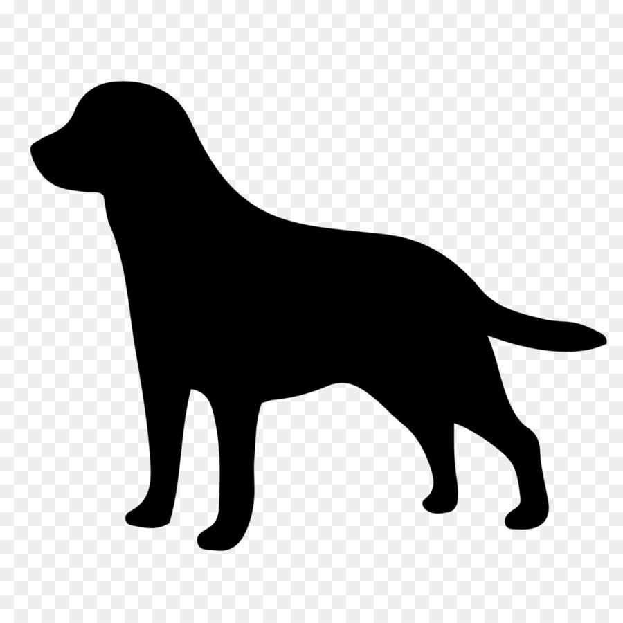 Labrador Retriever Golden Retriever Kooikerhondje Puppy - LAB png ...
