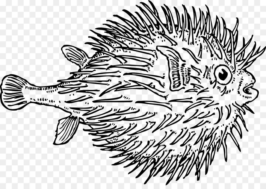 Pufferfish Fugu Clip art - dead fish png download - 2400*1674 - Free ...