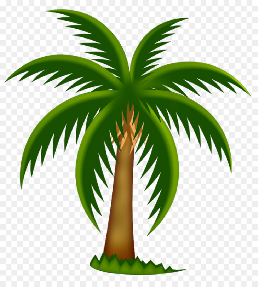 Arecaceae Date Palm Tree Clip Art   Palm Trees