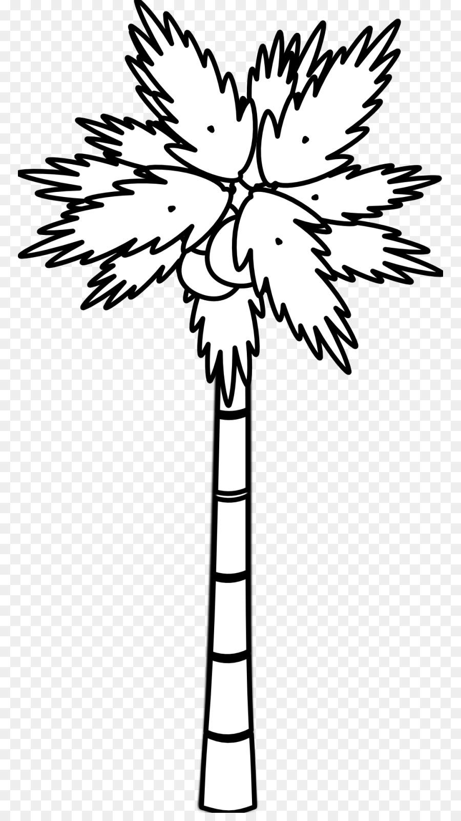 Árbol de coco Arecaceae Clip art - de coco de la hoja Formatos De ...