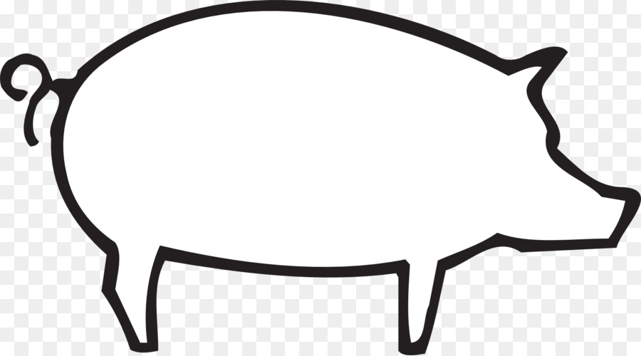 Co Pig Drawing Clip Art