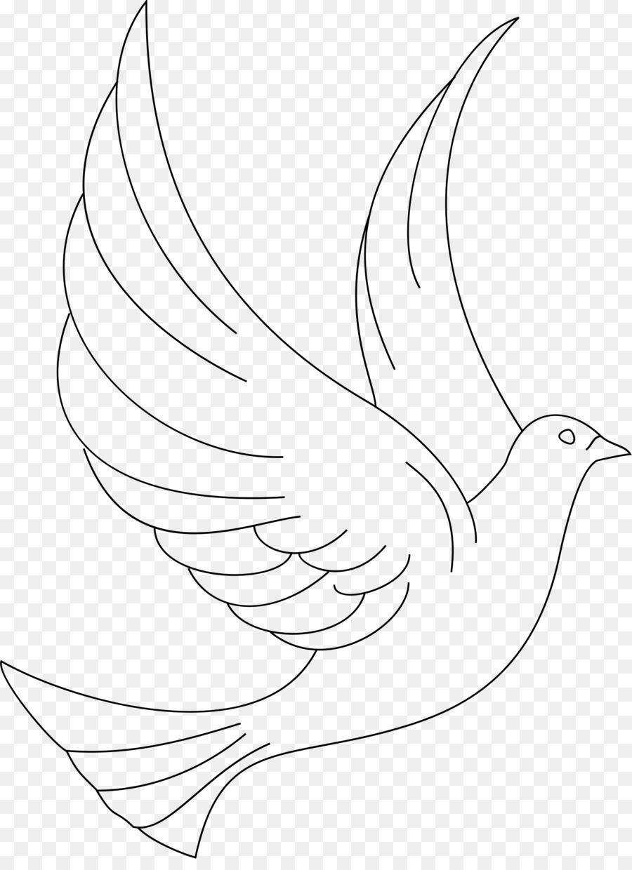 Libro para colorear en Línea Dibujo de Aves Clip art - PALOMA ...